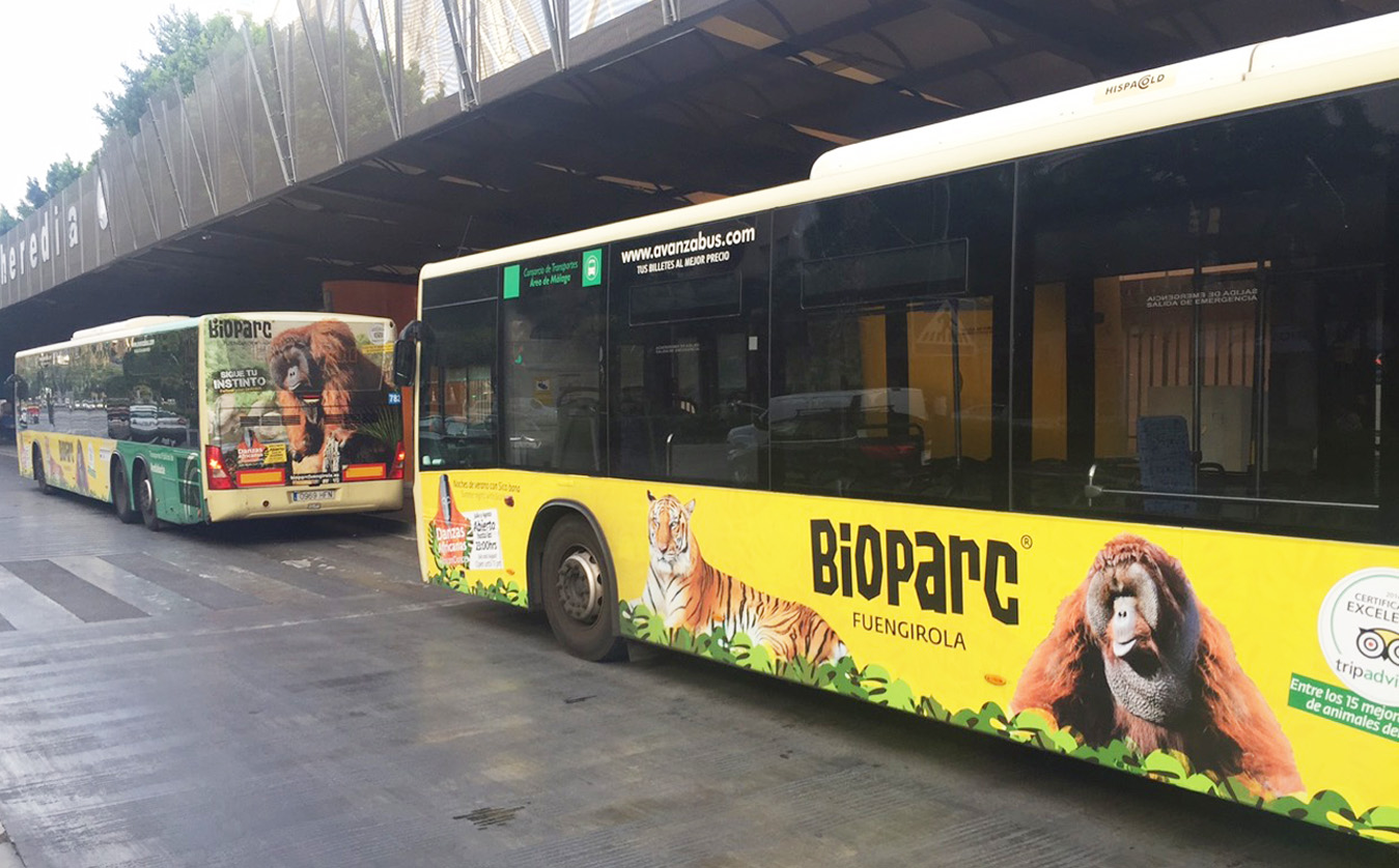 Advertising bus campaign for Bioparc Fuengirola